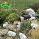 aranyos kerti fugurák