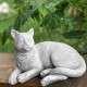 Fekvő macska