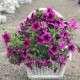 fonott virágkosár