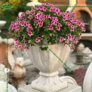 Vázák kőből