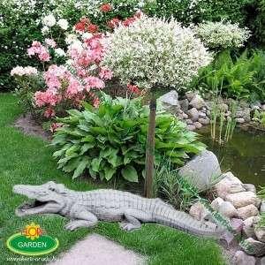 Kerti tó dekorációs krokodil