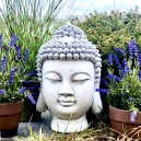 Buddha fej szobor