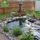 kerti vízköpő