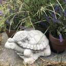 Feng shui teknős