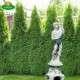 Disz talapzat szobrok kiemeléséhez