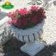 eladó virágtál