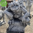 Gargoyle troll