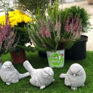 Madár kerti dísz