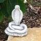 Kobra kígyó