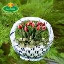 Kosár virágtartó