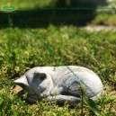 Kis cica szobor